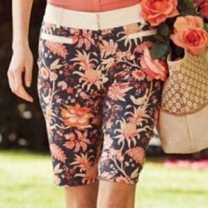 ANTHRO Leifsdottir Shorts Size 6